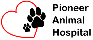 Top 10 Veterinarian Oregon City, Pioneer Animal Hospital