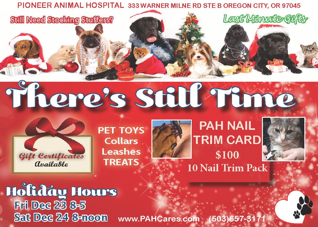 Last minute gifts PETS, top vets oregon city